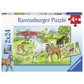 Ravensburger - Op de manege (2x24) - Kinderpuzzel