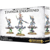 Warhammer Age of Sigmar -  Tzaangor Enlightened - games workshop