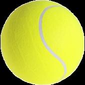 Grote Tennisbal Ø 13cm
