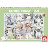 Schmidt - Puppies (200) - Puzzel