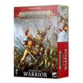 Warhammer: Age of Sigmar Warrior (EN) - (80-15)
