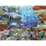 Leven onder Water (3000)
