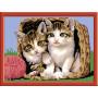 Ravensburger - Schilderen op nummer - Katjes in een mand